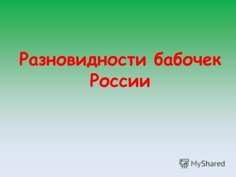 Разновидности бабочек России