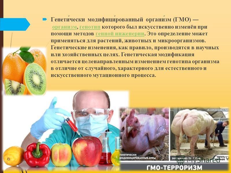Генети́чески модификации́рованный органы́зм (ГМО ) органызм, генотип которого был искусственно изменён при помощи методов генной инженерии. Это определение может применяться для растений, животных и микроорганызмов. Генетические изменения, как правил