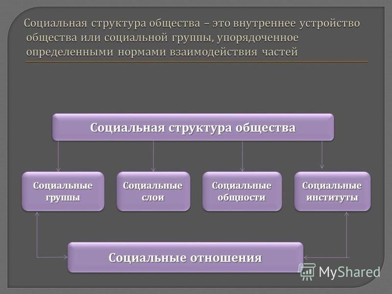 Социальная структура общества Социальные слои Социальные группы Социальные общности Социальные институты Социальные отношения