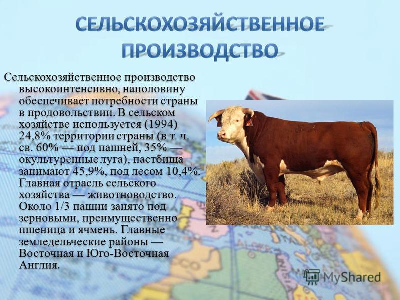 Сельскохозяйственное производство высокоинтенсивной, наполовину обеспечивает потребности страны в продовольствии. В сельском хозяйстве используется (1994) 24,8% территории страны (в т. ч. св. 60% под пашней, 35% окультуренные луга), пастбища занимают