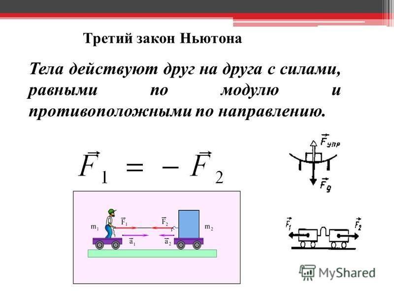 Третий закон Ньютона Тела действуют друг на друга с силами, равными по модулю и противоположными по направлению.