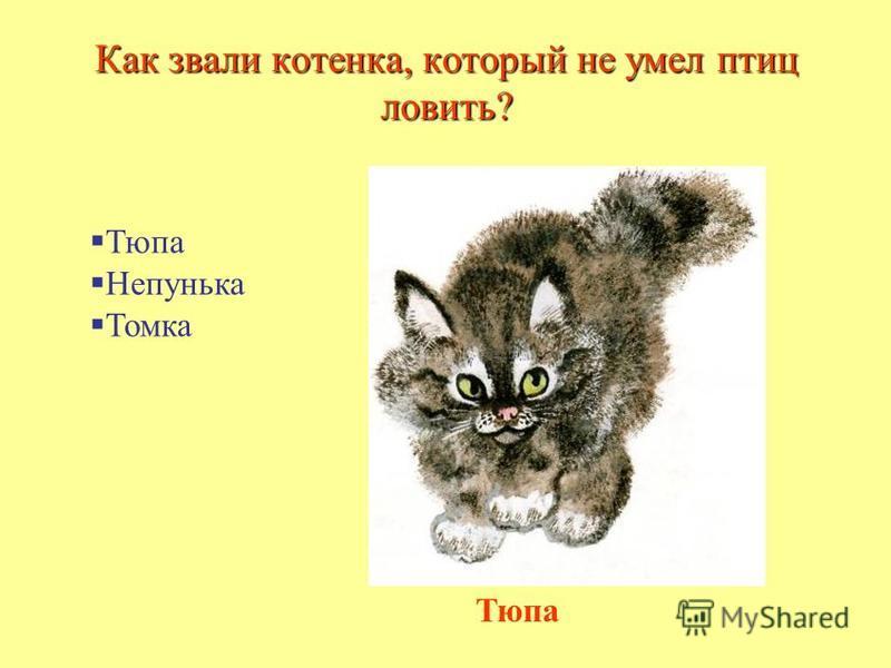 Как звали котенка, который не умел птиц ловить? Тюпа Непунька Томка Тюпа