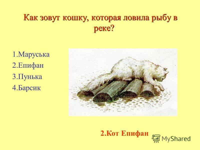 Е.чарушин рассказы о животных кот епифан