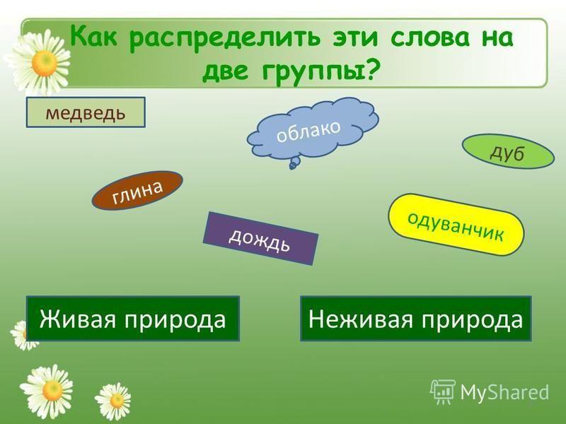 Как распределить эти слова на две группы? медведь облако дуб одуванчик глина дождь Живая природа Неживая природа 4