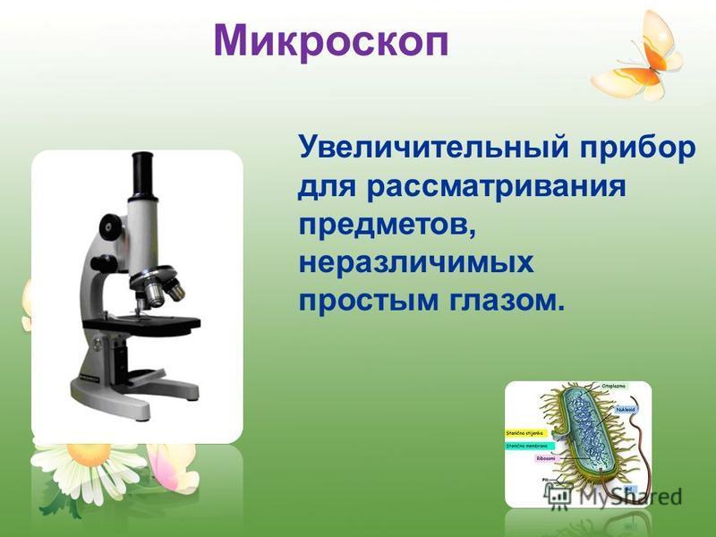 Микроскоп Увеличительный прибор для рассматривания предметов, неразличимых простым глазом.