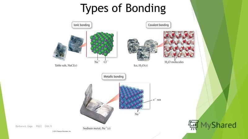 Barbara A. Gage PGCC CHM 1010 Types of Bonding
