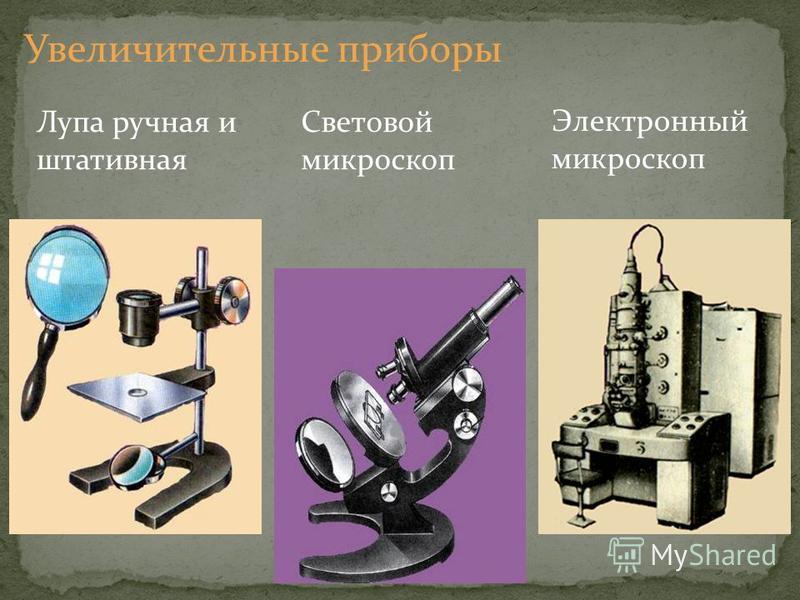 Лупа ручная и штативная Световой микроскоп Электронный микроскоп Увеличительные приборы