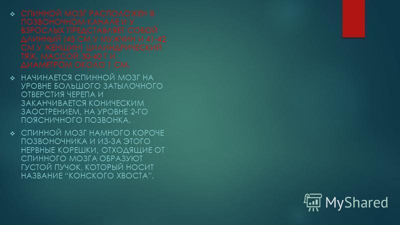 СПИННОЙ МОЗГ РАСПОЛОЖЕН В ПОЗВОНОЧНОМ КАНАЛЕ И У ВЗРОСЛЫХ ПРЕДСТАВЛЯЕТ СОБОЙ ДЛИННЫЙ (45 СМ У МУЖЧИН И 41-42 СМ У ЖЕНЩИН) ЦИЛИНДРИЧЕСКИЙ ТЯЖ, МАССОЙ 30-40 Г И ДИАМЕТРОМ ОКОЛО 1 СМ. НАЧИНАЕТСЯ СПИННОЙ МОЗГ НА УРОВНЕ БОЛЬШОГО ЗАТЫЛОЧНОГО ОТВЕРСТИЯ ЧЕРЕ