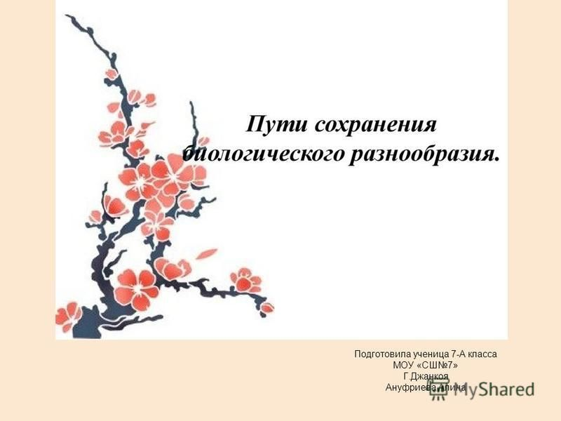 Подготовила ученица 7-А класса МОУ «СШ7» Г.Джанкоя Ануфриева Алина