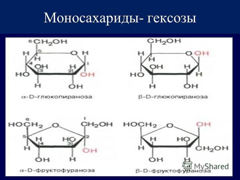 Моносахариды- гексозы
