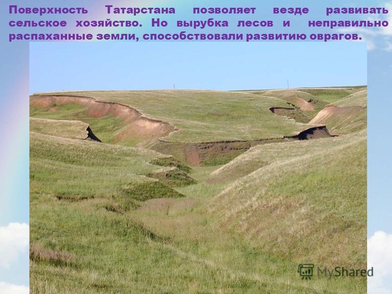 Поверхность Татарстана позволяет везде развивать сельское хозяйство. Но вырубка лесов и неправильно распаханные земли, способствовали развитию оврагов.