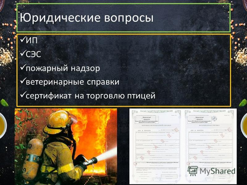 Юридические вопросы ИП СЭС пожарный надзор ветеринарные справки сертификат на торговлю птицей