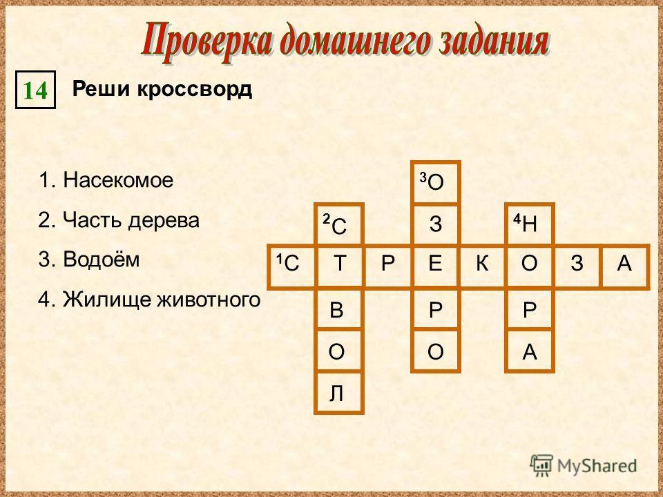 Реши кроссворд 14 1.Насекомое 2.Часть дерева 3.Водоём 4.Жилище животного 1С1СТРЕКОЗА 2 3 4 С В О Л О З Р О Р А Н