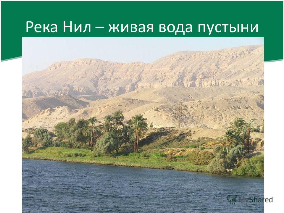 Река нил живая вода пустыни