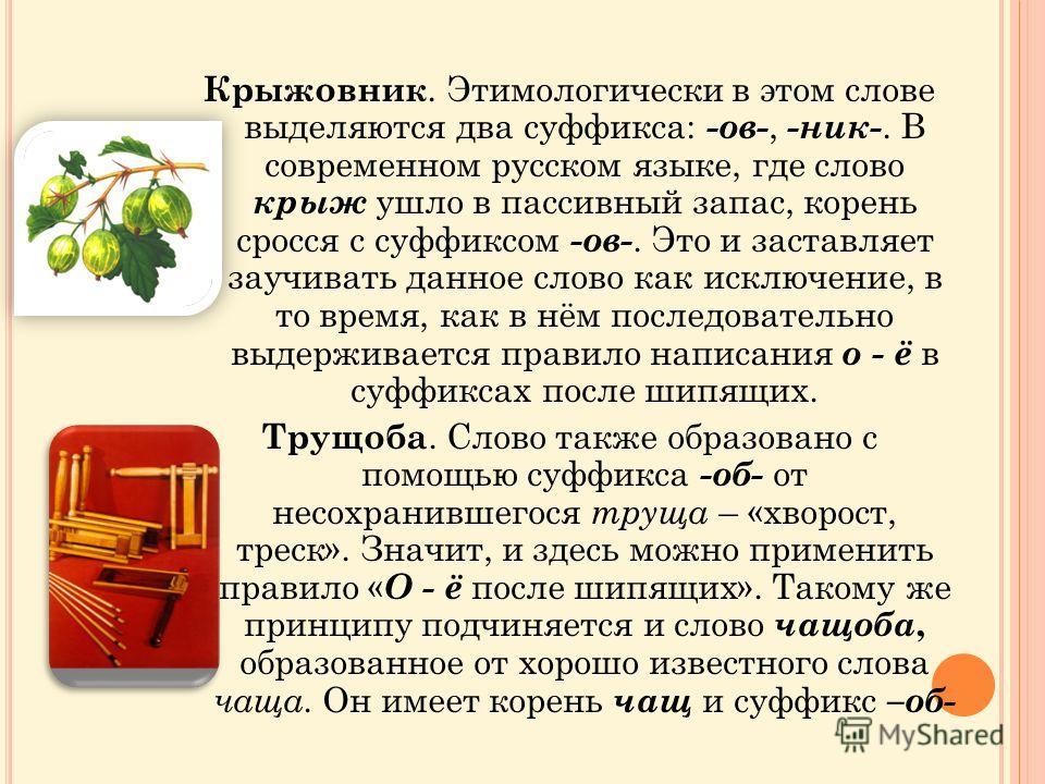 Крыжовник. Этимологически в этом слове выделяются два суффикса: -ов-, -ник-. В современном русском языке, где слово крыж ушло в пассивный запас, корень сросся с суффиксом -ов-. Это и заставляет заучивать данное слово как исключение, в то время, как в