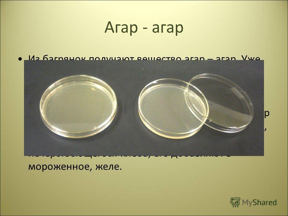Агар - агар Из багрянок получают вещество агар – агар. Уже 20г агара на 1л воды после остывания образуют плотный студень. Его применяют во всех микробиологических лабораториях мира для получения чистых культур микроорганизмов. Агар также идёт на изго