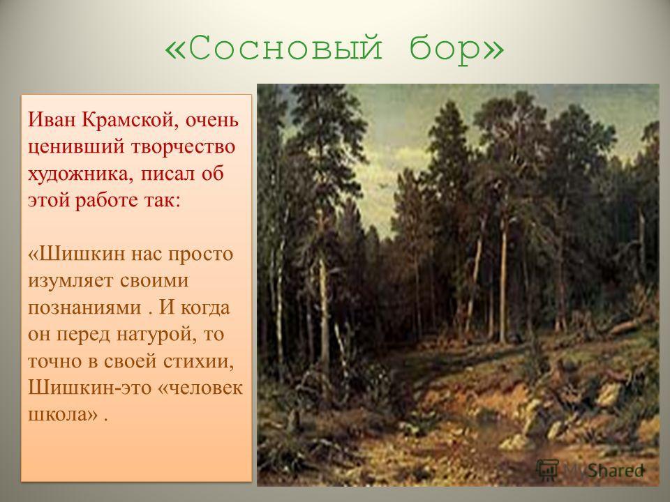 «Сосновый бор» Иван Крамской, очень ценивший творчество художника, писал об этой работе так: «Шишкин нас просто изумляет своими познаниями. И когда он перед натурой, то точно в своей стихии, Шишкин-это «человек школа». Иван Крамской, очень ценивший т