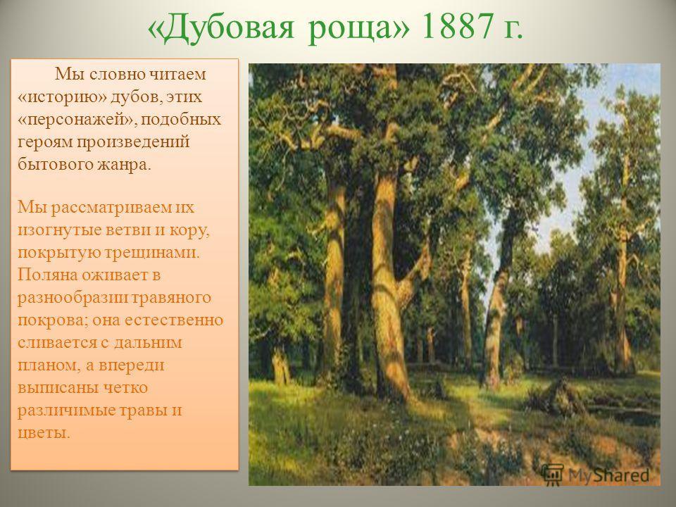 «Дубовая роща» 1887 г. Мы словно читаем «историю» дубов, этих «персонажей», подобных героям произведений бытового жанра. Мы рассматриваем их изогнутые ветви и кору, покрытую трещинами. Поляна оживает в разнообразии травяного покрова; она естественно