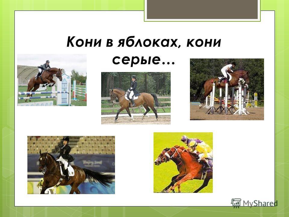 Кони в яблоках, кони серые…