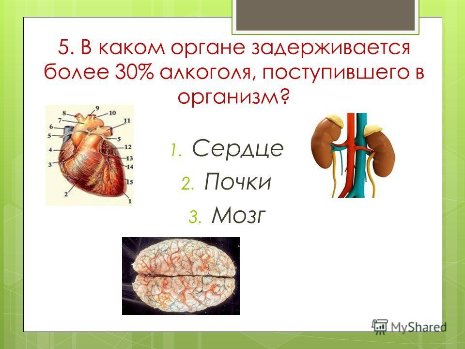 5. В каком органе задерживается более 30% алкоголя, поступившего в организм? 1. Сердце 2. Почки 3. Мозг