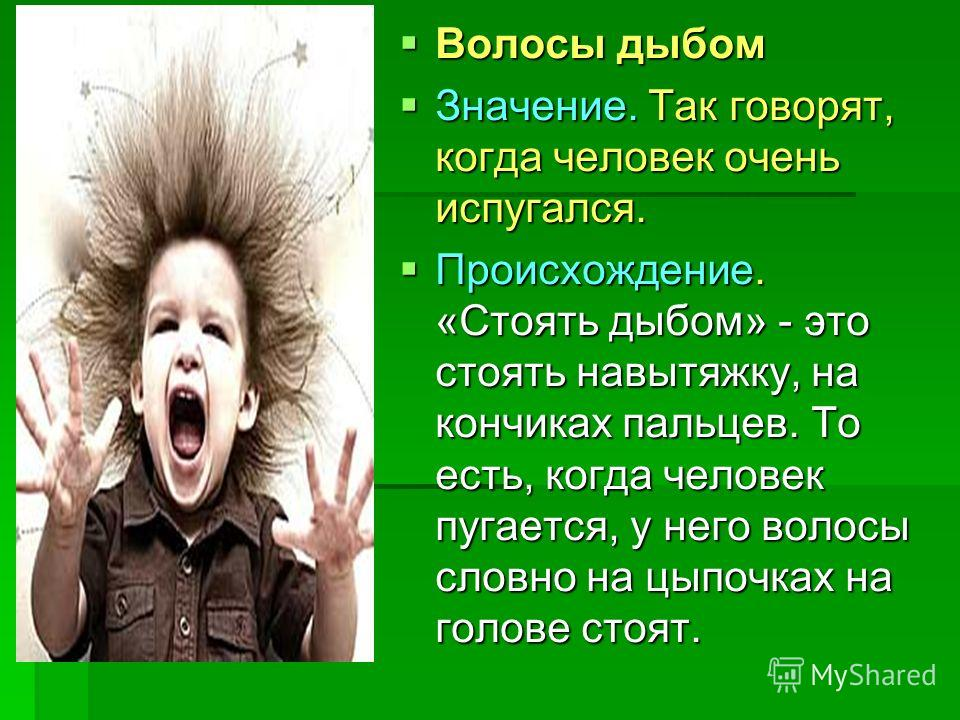 Волосы дыбом поднимаются значение фразеологизма - e