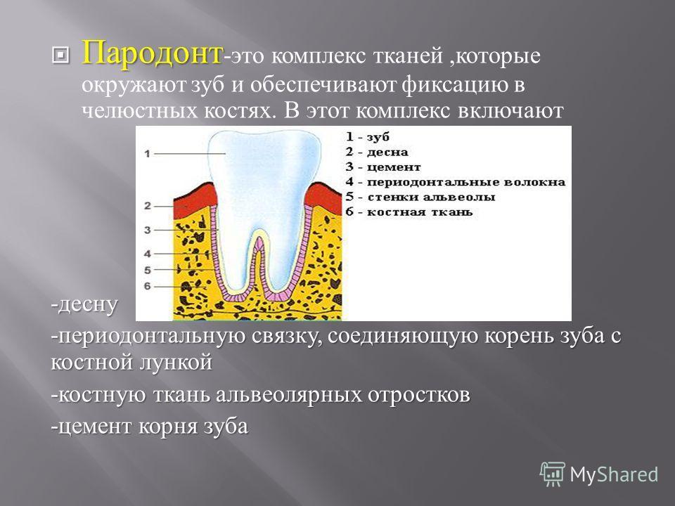Заболевание Периодонтальное фото
