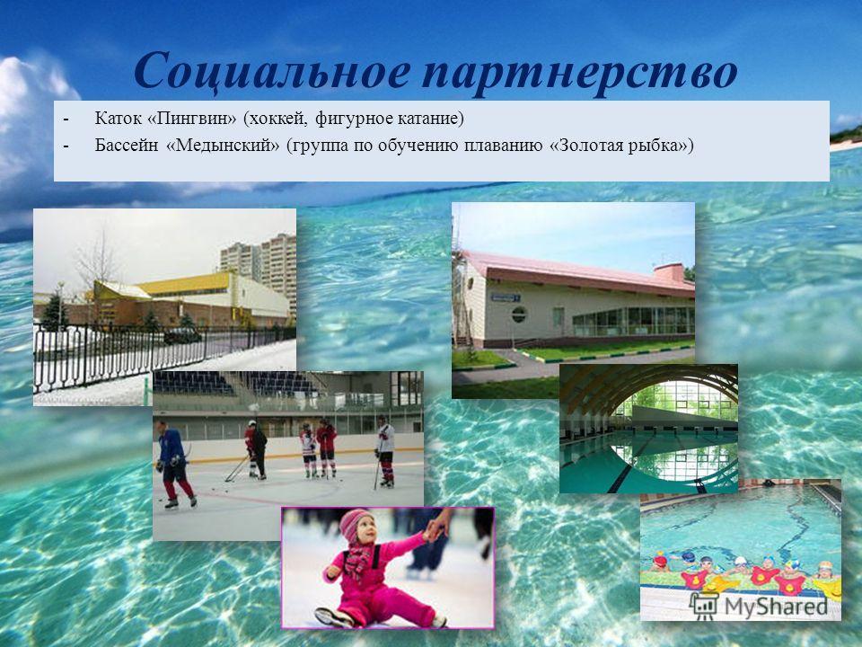Социальное партнерство -Каток «Пингвин» (хоккей, фигурное катание) -Бассейн «Медынский» (группа по обучению плаванию «Золотая рыбка»)