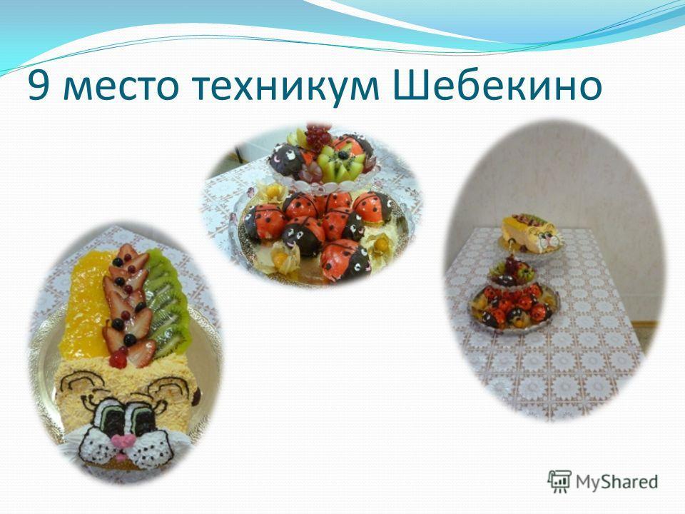 9 место техникум Шебекино