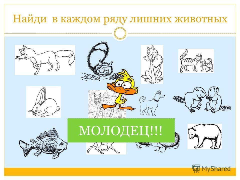 РАЗВИВАЮЩИЕ УПРАЖНЕНИЯ Дикие животные и их детёныши