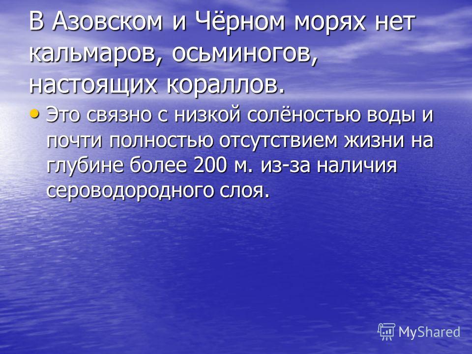 В Азовском и Чёрном морях нет кальмаров, осьминогов, настоящих кораллов. Это связно с низкой солёностью воды и почти полностью отсутствием жизни на глубине более 200 м. из-за наличия сероводородного слоя. Это связно с низкой солёностью воды и почти п