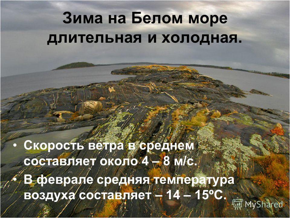 Зима на Белом море длительная и холодная. Скорость ветра в среднем составляет около 4 – 8 м/с. В феврале средняя температура воздуха составляет – 14 – 15ºС.