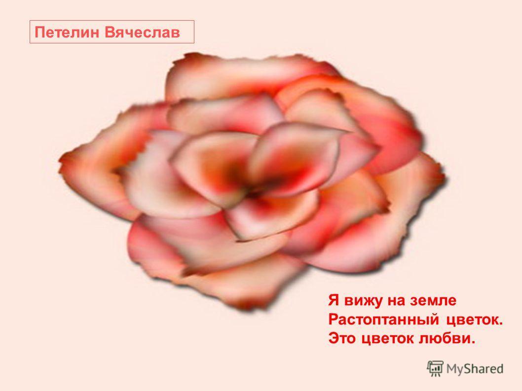 Я вижу на земле Растоптанный цветок. Это цветок любви. Петелин Вячеслав