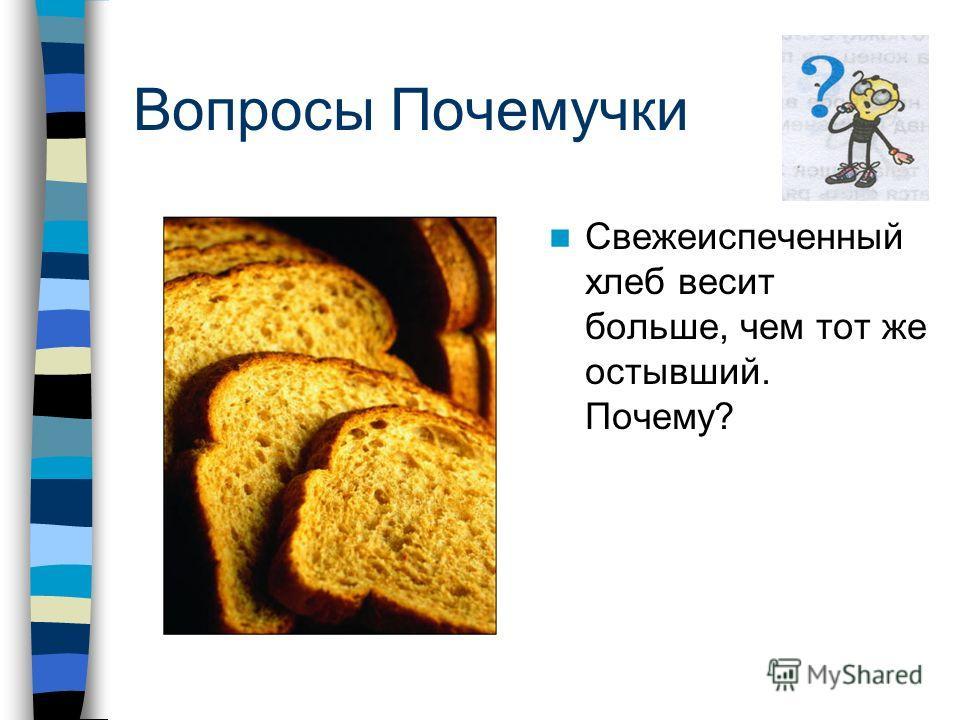 Вопросы Почемучки Свежеиспеченный хлеб весит больше, чем тот же остывший. Почему?