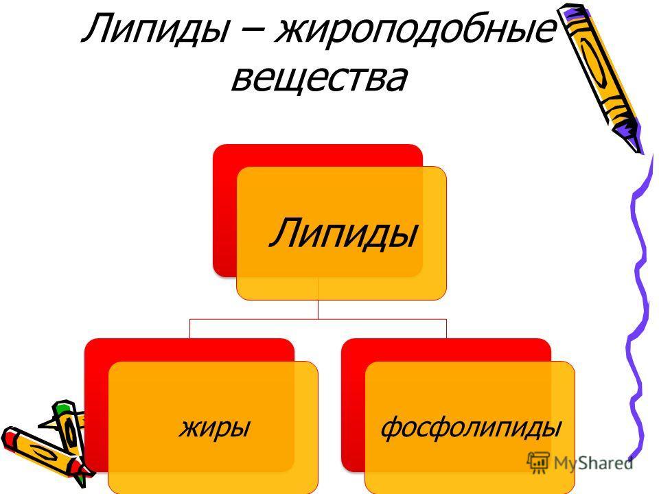 Липиды – жироподобные вещества Липиды жирыфосфолипиды