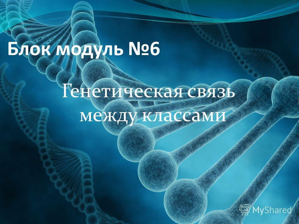 Блок модуль 6 Генетическая связь между классами