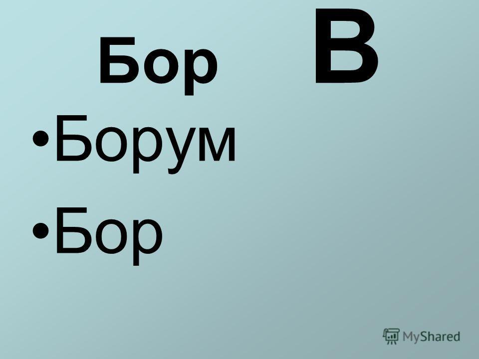 Бор В Борум Бор
