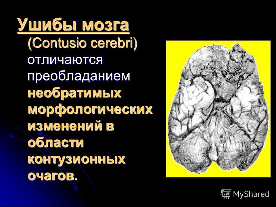 Ушибы мозга (Contusio cerebri) отличаются преобладанием необратимых морфологических изменений в области контузионных очагов.