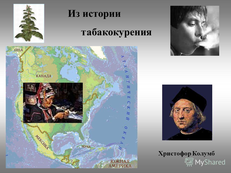 Из истории табакокурения Христофор Колумб