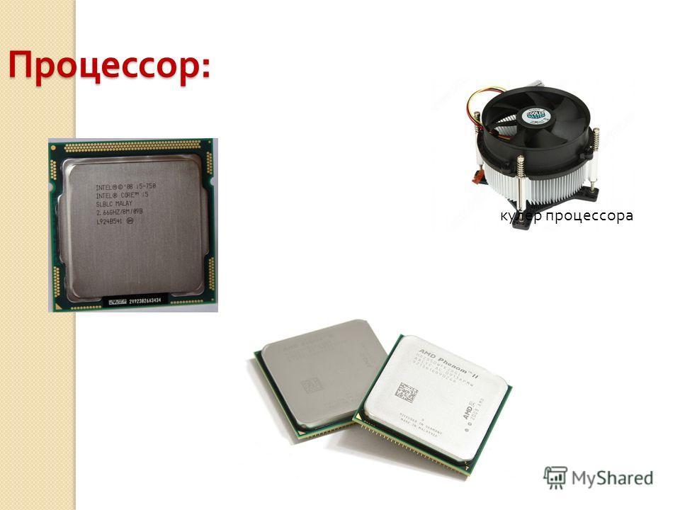Процессор : кулер процессора