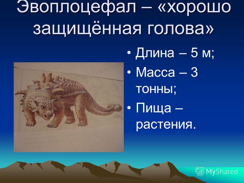 Эвоплоцефал – «хорошо защищённая голова» Длина – 5 м; Масса – 3 тонны; Пища – растения.