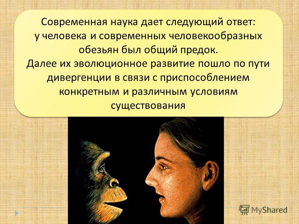 Современная наука дает следующий ответ : у человека и современных человекообразных обезьян был общий предок. Далее их эволюционное развитие пошло по пути дивергенции в связи с приспособлением конкретным и различным условиям существования Современная