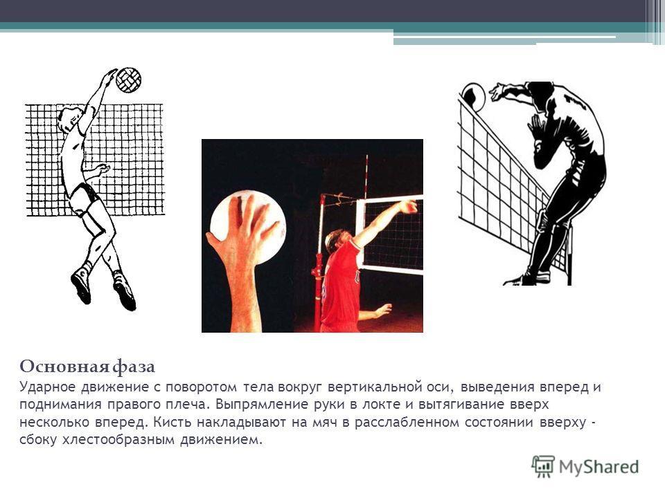Основная фаза Ударное движение с поворотом тела вокруг вертикальной оси, выведения вперед и поднимания правого плеча. Выпрямление руки в локте и вытягивание вверх несколько вперед. Кисть накладывают на мяч в расслабленном состоянии вверху - сбоку хле