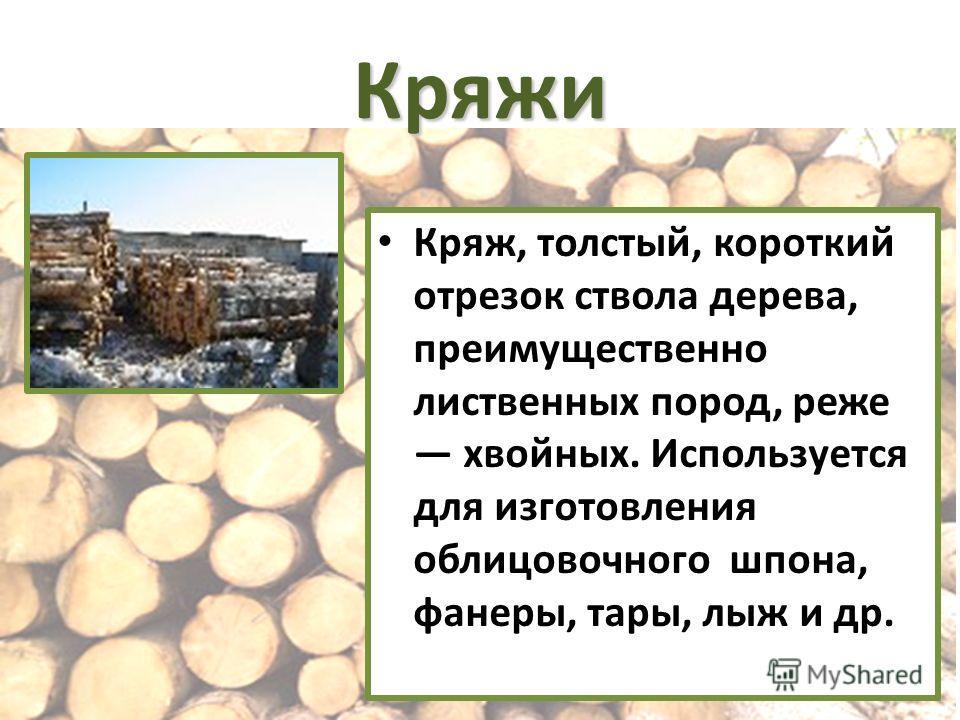 Кряжи Кряж, толстый, короткий отрезок ствола дерева, преимущественно лиственных пород, реже хвойных. Используется для изготовления облицовочного шпона, фанеры, тары, лыж и др.