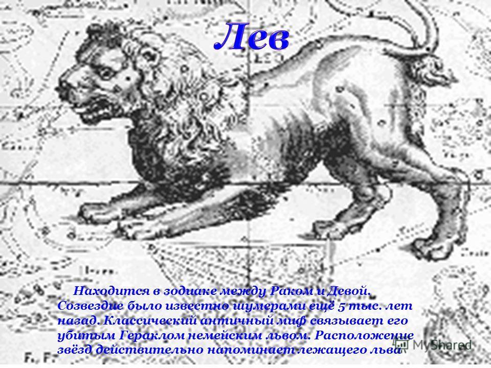 Находится в зодиаке между Раком и Девой. Созвездие было известно шумерами ещё 5 тыс. лет назад. Классический античный миф связывает его убитым Гераклом немейским львом. Расположение звёзд действительно напоминает лежащего льва