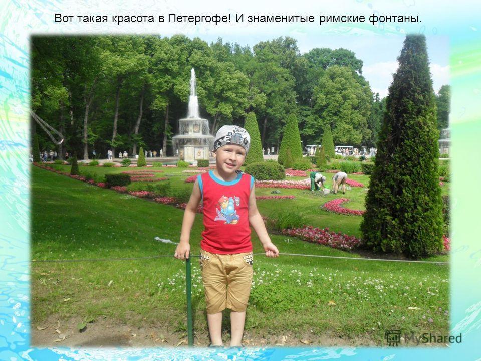 Вот такая красота в Петергофе! И знаменитые римские фонтаны.