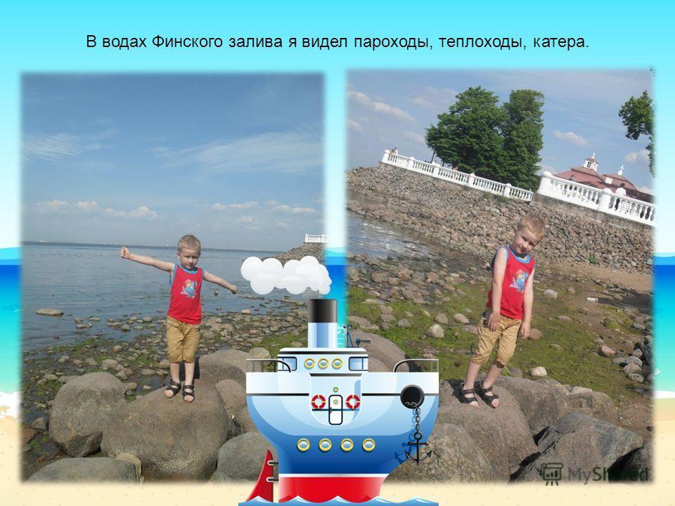 В водах Финского залива я видел пароходы, теплоходы, катера.