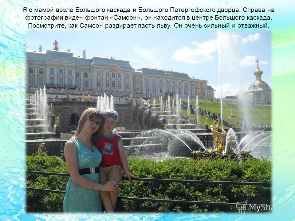 Я с мамой возле Большого каскада и Большого Петергофского дворца. Справа на фотографии виден фонтан «Самсон», он находится в центре Большого каскада. Посмотрите, как Самсон раздирает пасть льву. Он очень сильный и отважный.