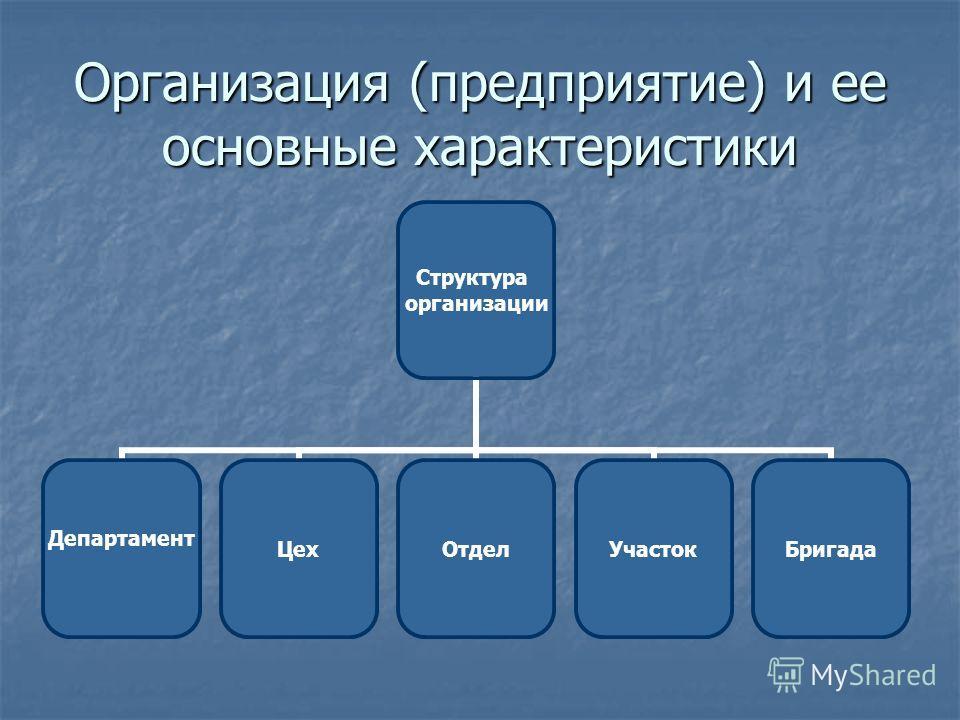 Организация (предприятие) и ее основные характеристики Структура организации Департамент ЦехОтделУчастокБригада