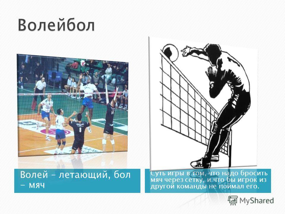 Волей – летающий, бол - мяч Суть игры в том, что надо бросить мяч через сетку, и что бы игрок из другой команды не поймал его.