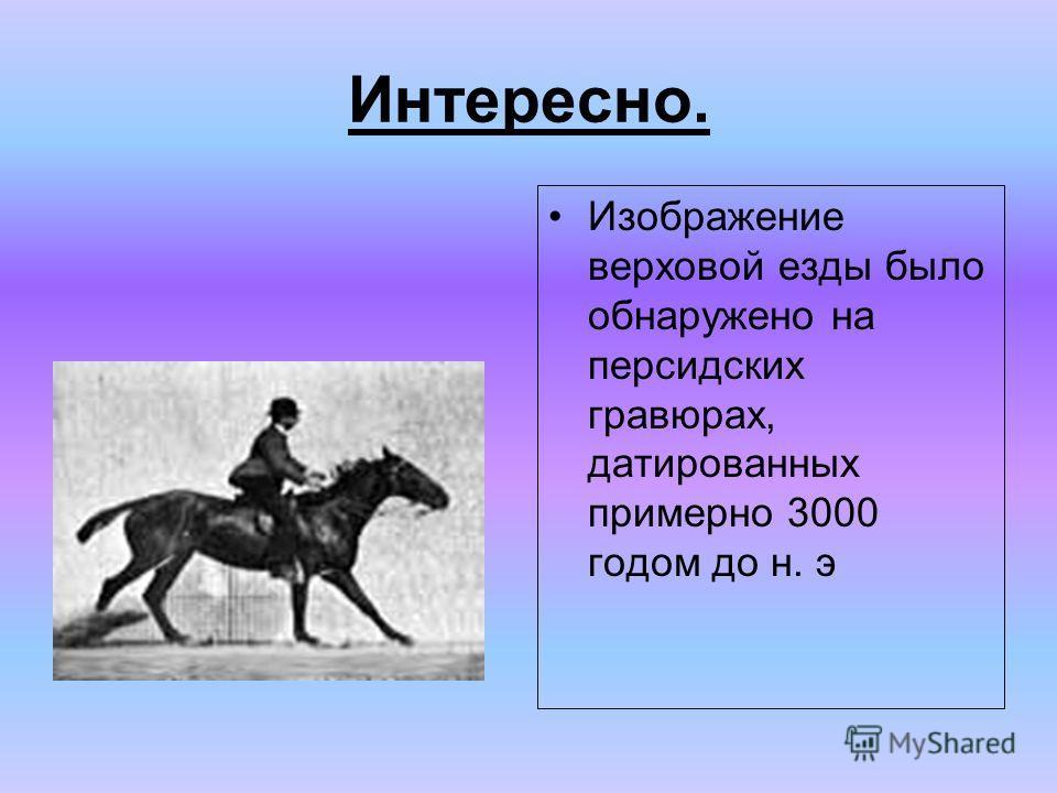 Интересно. Изображение верховой езды было обнаружено на персидских гравюрах, датированных примерно 3000 годом до н. э